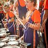 clemson-tiger-band-georgia-2014-67