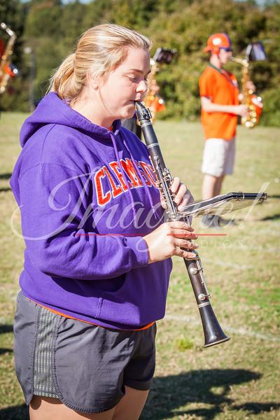 clemson-tiger-band-ncstate-2014-41
