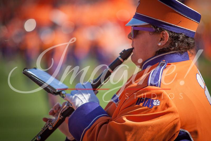 clemson-tiger-band-usc-2014-251