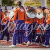 clemson-tiger-band-usc-2014-200