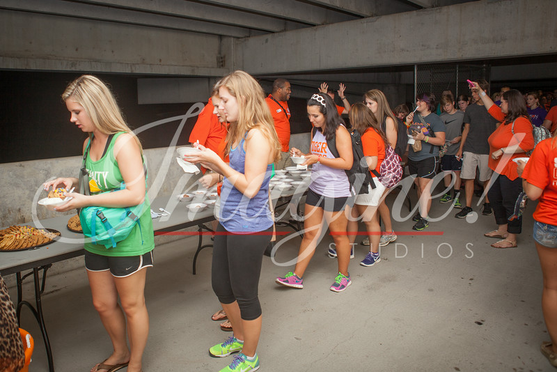 clemson-tiger-band-preseason-camp-2014-209