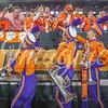clemson-tiger-band-national-championship-459