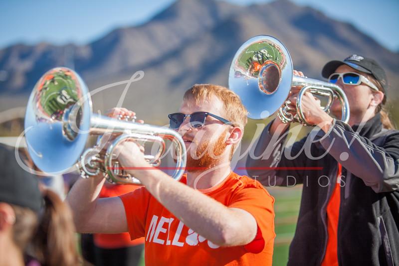 clemson-tiger-band-national-championship-267