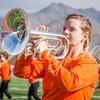 clemson-tiger-band-national-championship-63