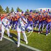 clemson-tiger-band-national-championship-339