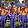 clemson-tiger-band-national-championship-357