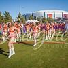 clemson-tiger-band-national-championship-331