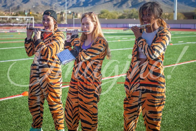 clemson-tiger-band-national-championship-254
