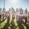 clemson-tiger-band-national-championship-261