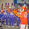 clemson-tiger-band-acc-championship-2015-14