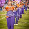 clemson-tiger-band-acc-championship-2015-256