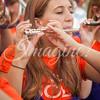 clemson-tiger-band-miami-2015-4