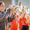 clemson-tiger-band-usc-2015-40