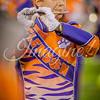 clemson-tiger-band-fsu-2015-965