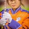 clemson-tiger-band-fsu-2015-968