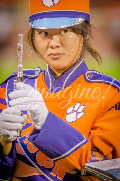 clemson-tiger-band-fsu-2015-969