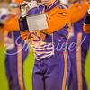 clemson-tiger-band-fsu-2015-897