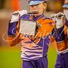 clemson-tiger-band-fsu-2015-900