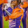 clemson-tiger-band-fsu-2015-937