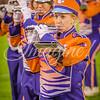 clemson-tiger-band-fsu-2015-959