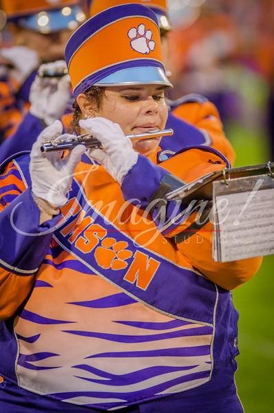 clemson-tiger-band-fsu-2015-946