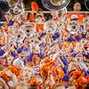 clemson-tiger-band-fsu-2015-1050