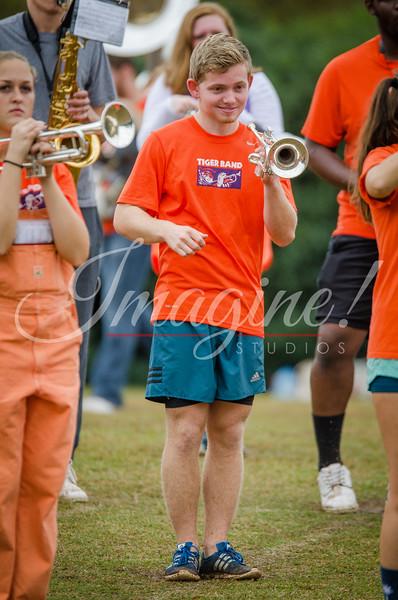 clemson-tiger-band-fsu-2015-238