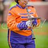 clemson-tiger-band-fsu-2015-728