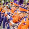 clemson-tiger-band-wf-2015-713