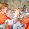 clemson-tiger-band-wf-2015-108