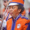 clemson-tiger-band-wf-2015-914