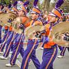clemson-tiger-band-wf-2015-719