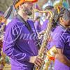 clemson-tiger-band-wf-2015-131