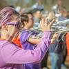 clemson-tiger-band-wf-2015-119