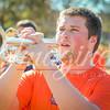 clemson-tiger-band-wf-2015-339