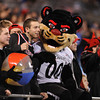 2012 NCAA Belk Bowl between the Cincinnati Bearcats and the Duke Blue Devils at Bank of America Stadium.