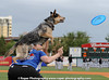 MILB Baseball 2013 - Charleston River Dogs defeats the Kannapolis Intimidators  1-0
