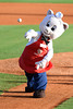MILB Baseball 2013 - Rome Braves defeat Charleston RiverDogs 5-0
