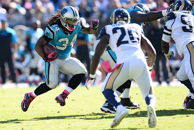 NFL Football 2013 - St. Louis Rams vs Carolina Panthers