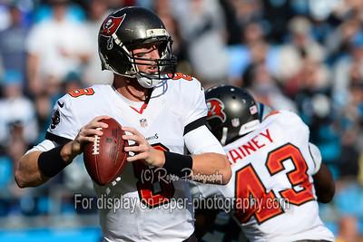NFL Football 2013 - Tampa Bay Buccaneers vs Carolina Panthers