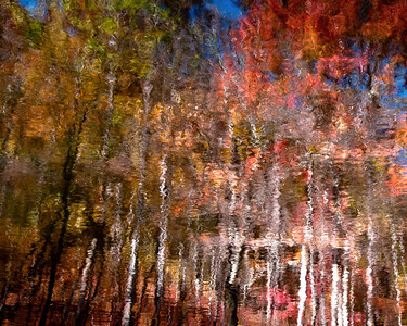 Fall's Refection I