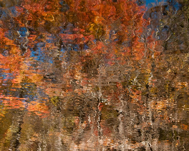 Fall's Reflection II
