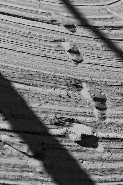 Footsteps, Greilickville, Mi 120807-30 reduced size