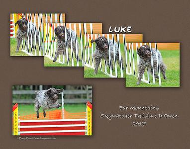 Diamond 11x Luke montage