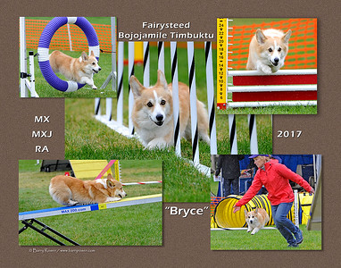 Hunter 11x14 Bryce montage