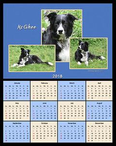 Donoghue 2018 calendar