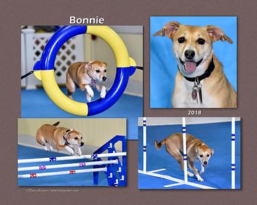 DiFiore 8x Bonnie montage