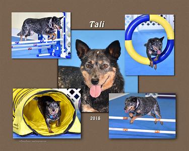 Slattery 8x 5-photo Tali montage