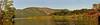 Marsh panorama
