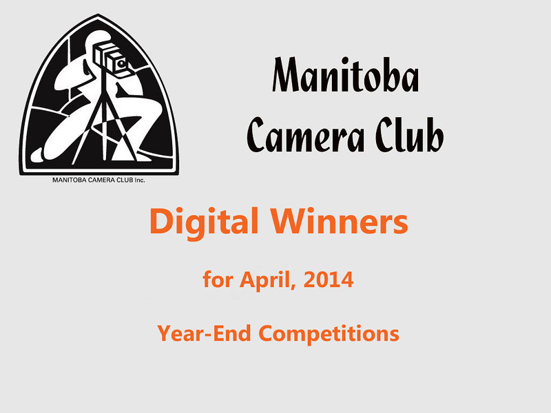 Digital Winners April 2014